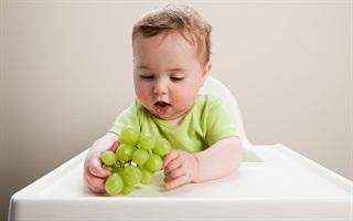Những lưu ý khi cho trẻ 6 tháng tuổi ăn trái cây