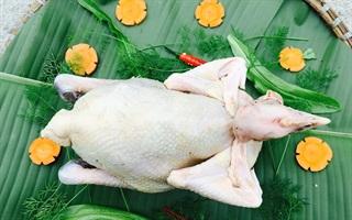 Tất tần tật quá trình từ cắt tiết gà đến chặt gà cúng ngày Tết