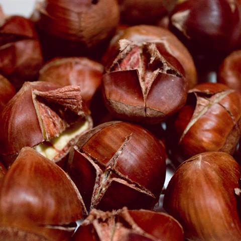 Mách bạn cách làm chín và bóc hạt dẻ đơn giản dễ dàng ngay tại nhà