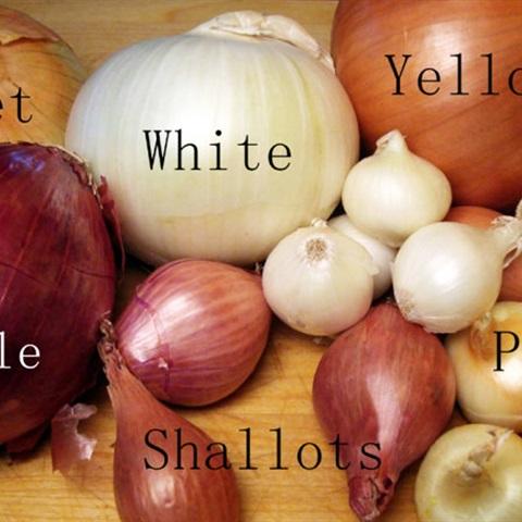 Cách sử dụng đúng chuẩn các loại hành trong nấu nướng