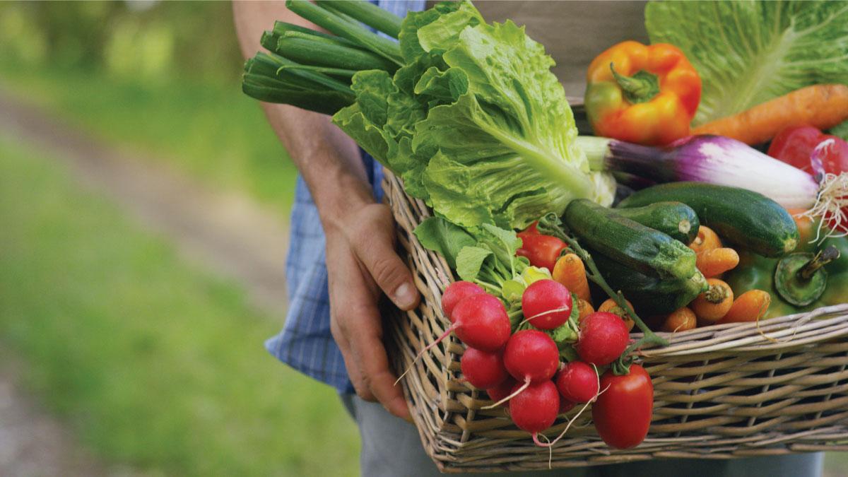 Dựa vào màu sắc để chọn rau củ quả tươi