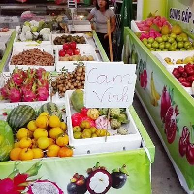 Shop trái cây Dana - Phạm Như Xương