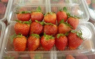 Cửa hàng trái cây Tường Vy - Phạm Văn Chiêu