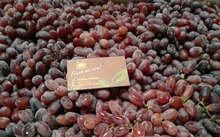 F5 Fruit Shop - Nguyễn Cửu Vân