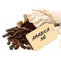 Cà phê Drip - Arabica Sẻ