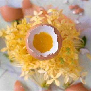Cách Làm Thạch Rau Câu Hình Trứng Gà Ngay Tại Nhà