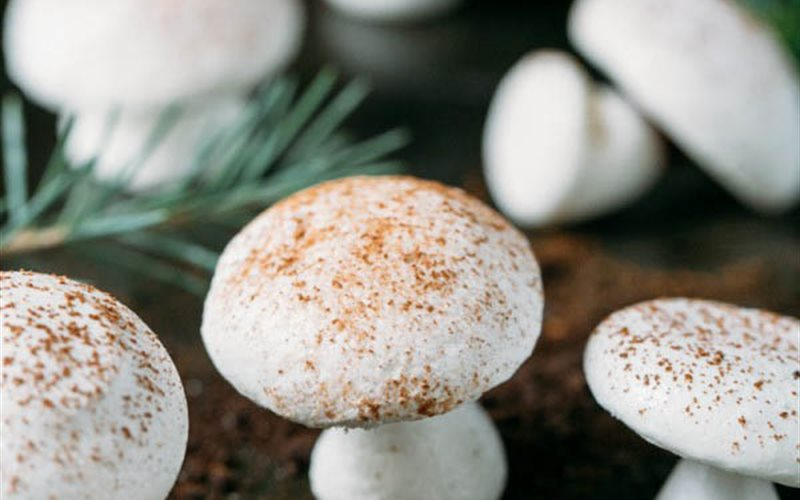 Cách làm Bánh meringue hình nấm