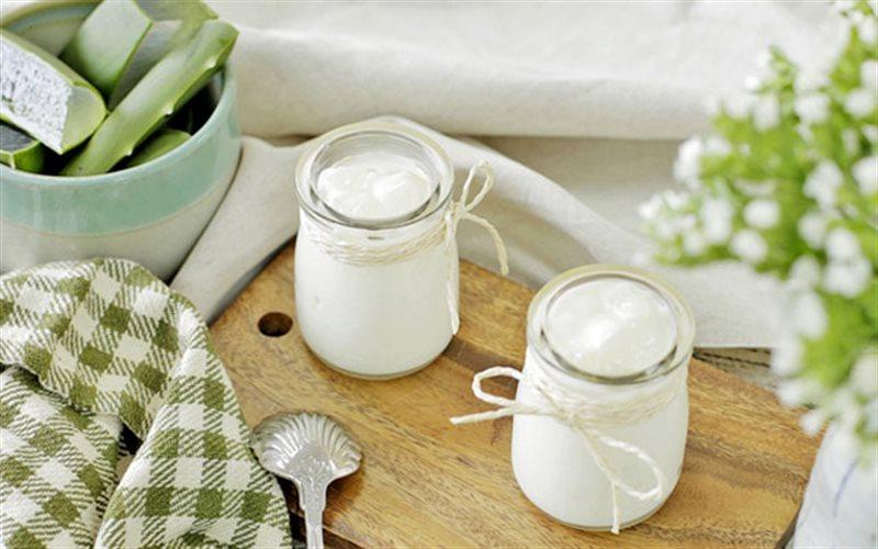 Cách Làm Sữa Chua Nha Đam Ngày Tết, Cực Bổ Dưỡng
