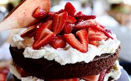 Các loại bánh ngon ngất ngây làm từ chocolate