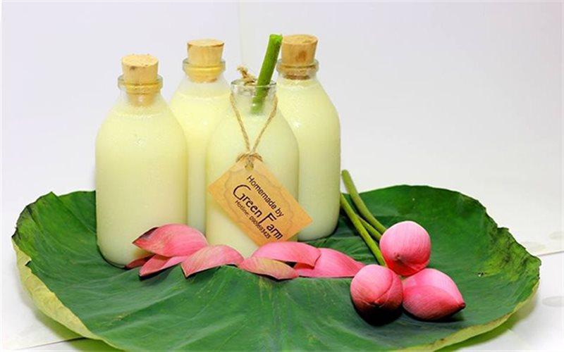 Cách Làm Sữa Hạt Sen Bổ Dưỡng Thơm Ngon Đơn Giản