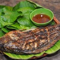 Các món ngon được chế biến từ cá rô