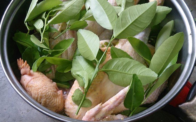 Cách làm gà luộc lá chanh không cần nước