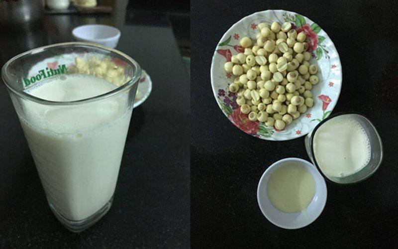 Cách Nấu Sữa Hạt Sen Thơm Ngon Siêu Dinh Dưỡng