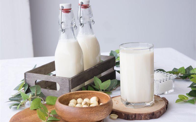 Cách làm Sữa Hạt Sen béo bùi bổ dưỡng cực đơn giản