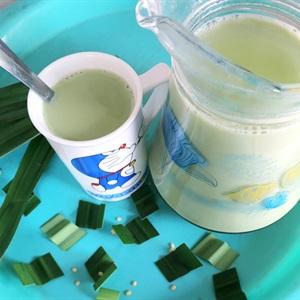 Sữa đậu xanh hương lá dứa