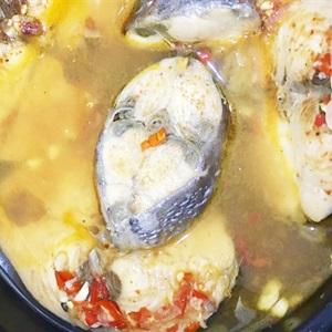 Cá ngừ kho với nước dừa