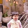 Lê Hồng