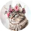 Mèo Cái Hay Cười