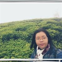 ngoisaocodon523