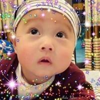 ho_linh8416